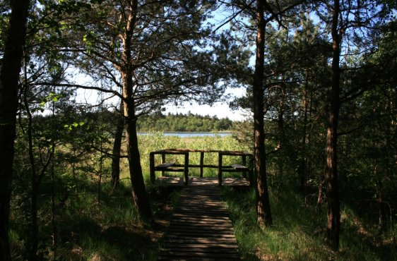 NSG Grambower Moor, Aussichtspunkt