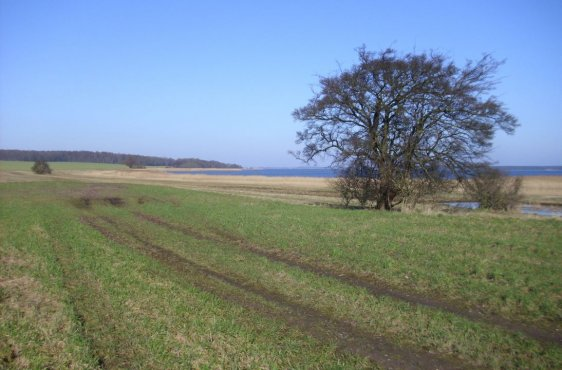 Blick zur Halbinsel Liddow
