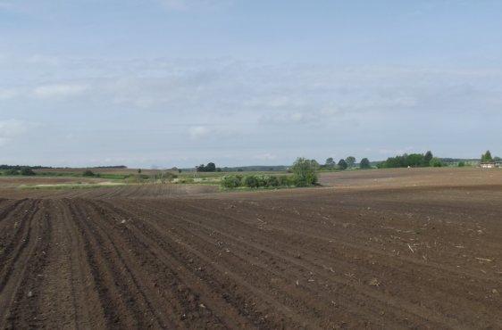 Ackerfläche bei Kargow im Mai 2013