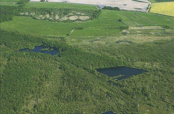 Überblick über das Moor aus nordwestlicher Richtung (Bild: © Demmler Verlag)