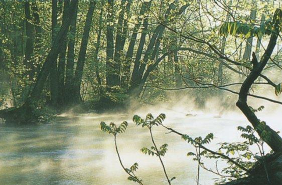 Die Nebel bei Hoppenrade (Bild mit freundlicher Genehmigung © Demmler Verlag)