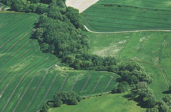 Blick von Norden auf die Ostpeene bei Duckow (Bild mit freundlicher Genehmigung (c) Demmler Verlag)