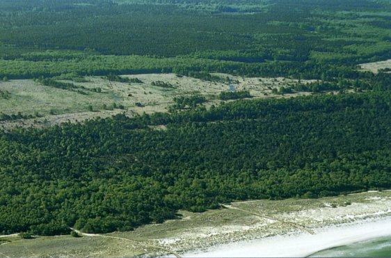 Blick von Norden auf das Ribnitzer Große Moor (Bild mit freundlicher Genehmigung (c) Demmler Verlag)