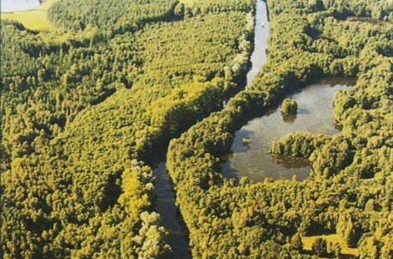 Blick von Süden mit Torfstichen (Bild mit freundlicher Genehmigung (c) Demmler Verlag)
