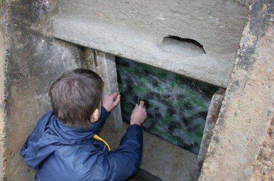 Der Eingang zu einem Bunker ist verschlossen, nur die Fledermäuse gelangen durch den oberen Schlitz in ihr Quartier