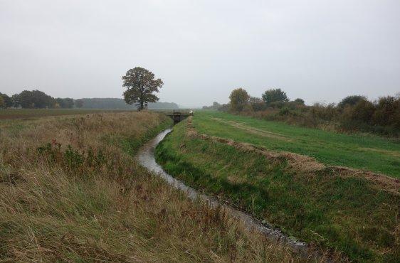 """Der tief eingeschnittene """"Brückengraben"""" entwässert die östliche Delvenauniederung"""