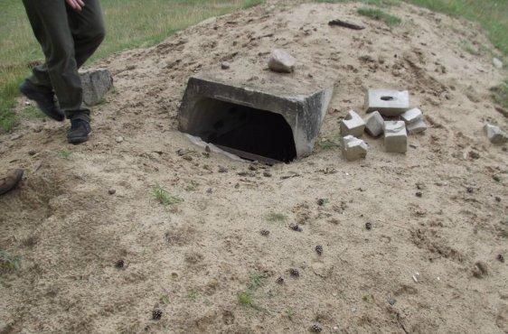 Vor den Bauarbeiten: Der Eingang zu diesem Bunker ist fast vollständig durch Erde verschlossen – so können Prädatoren die Fledermäuse beim Versuch des Einflugs abfangen. Zudem gelangen die Quartierbetreuer zu Kontrollzählungen nicht hinein.