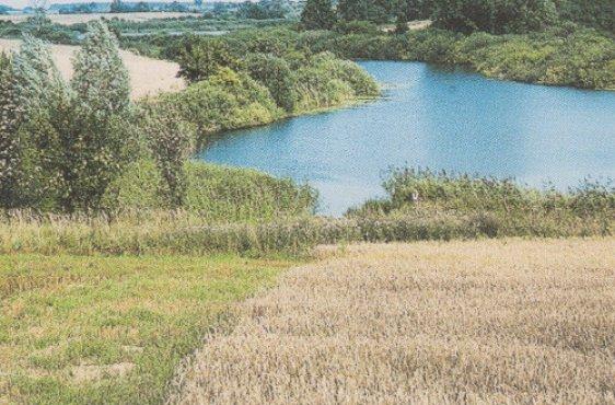 Südteil des Darschkowsees (Bild mit freundlicher Genehmigung © Demmler Verlag)