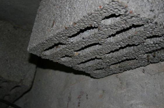 Im Bunker angebrachte Hohlblocksteine optimieren das Spaltenangebot für die Fledermäuse innen in den Bunkerräumen