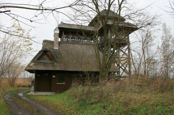 Beobachtungsturm am Jezioro Świdwie, Europäisches Naturschutzgebiet (FFH-Gebiet)