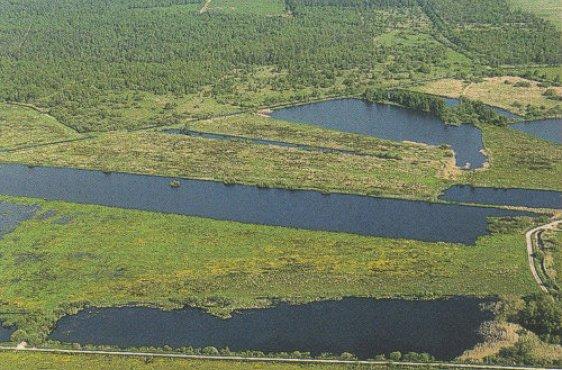 Offene Torfstiche bei Tribsees, dahinter das Grenztalmoor  (Bild mit freundlicher Genehmigung © Demmler Verlag)