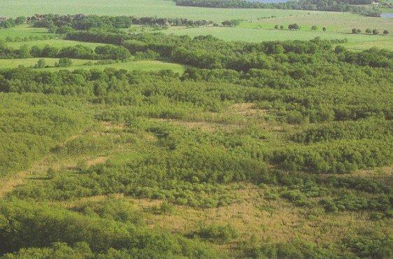 Blick über die Moorflächen aus nordwestlicher Richtung (Bild mit freundlicher Genehmigung © Demmler Verlag)