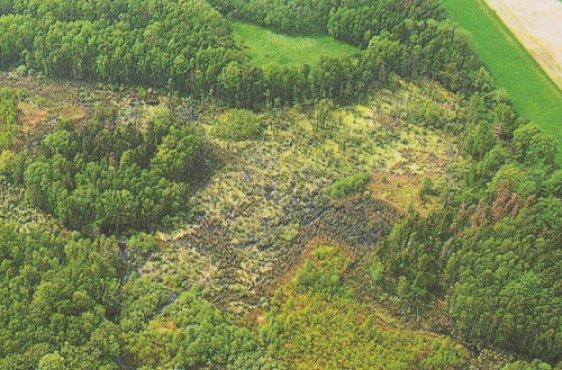 Blick auf den östlichen Teil des Moores (Bild mit freundlicher Genehmigung © Demmler Verlag)