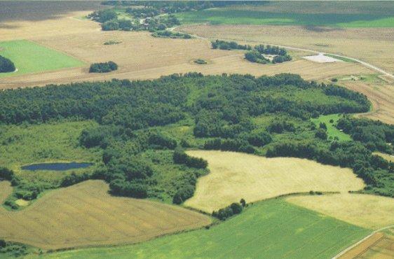 Blick von Norden über das Moor, im HIntergrund Mannhagen (Bild mit freundlicher Genehmigung © Demmler Verlag)