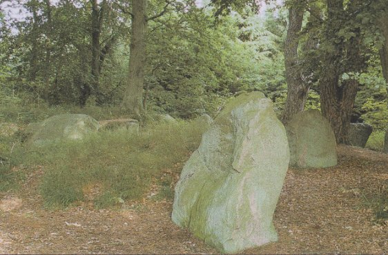 Großsteingrab am Ostrand des Schutzgebietes (Bild mit freundlicher Genehmigung © Demmler Verlag)