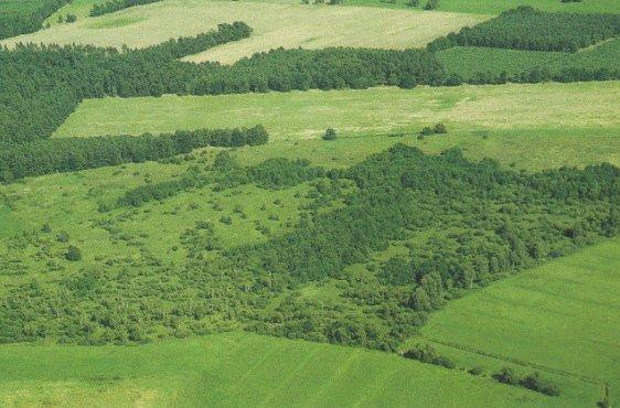 Blick von Westen auf das Wallmoor (Bild mit freundlicher Genehmigung © Demmler Verlag)