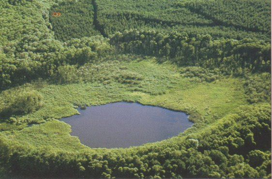 Der Zahrensee von Nordosten, im HIntergrund links Carolinenhof (Bild mit freundlicher Genehmigung © Demmler Verlag)