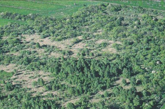 Blick von Süden auf die Landgrabenwiesen (Bild mit freundlicher Genehmigung © Demmler Verlag)