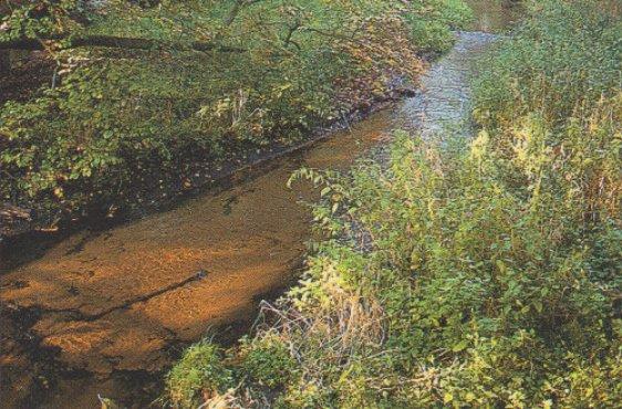 Talausschnitt im Mittellauf (Bild mit freundlicher Genehmigung © Demmler Verlag)