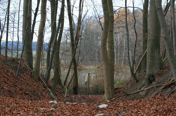 Verschlossener Ablauf des Schliesee im November 2015