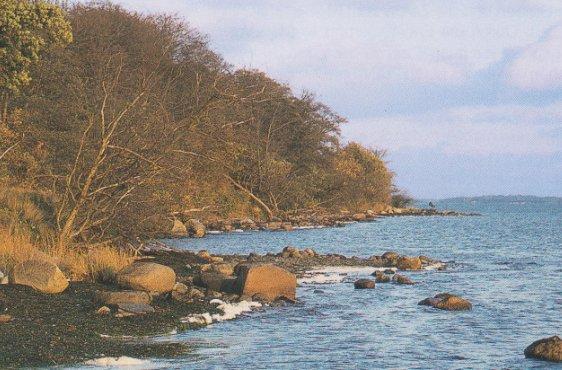 Goor, aktives Kliff (Bild mit freundlicher Genehmigung © Demmler Verlag)